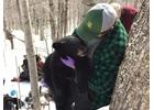 A state wildlife biologist holds a black bear cub.